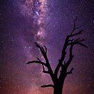 Milky Silhouette Tree by James Garlick