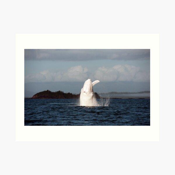 The Big White Whale Art Print