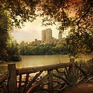 View From Central Park by Jessica Jenney