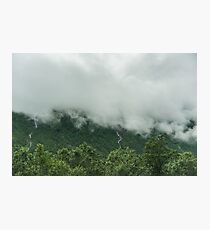 Cloud covered forest in Hordaland  Photographic Print