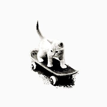 Skater Cat by therationalcat