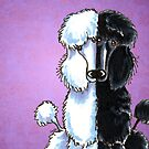 White and Black Standard Poodles Purple by offleashart