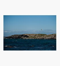 A swallow flying over the sea Photographic Print