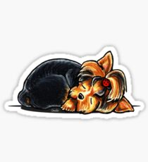 Yorkie Sleeping Babe Sticker