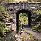 Glen Span Arch by Jessica Jenney