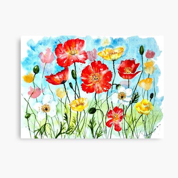 Icelandic Poppies Canvas Print