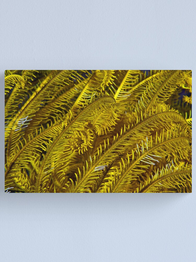 Alternate view of Yellow feathers Canvas Print