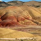 Painted Hills by Evening Light by TeresaB