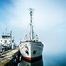 Baikal Docking by Ruben D. Mascaro