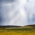 Storms a brewing by Ruben D. Mascaro