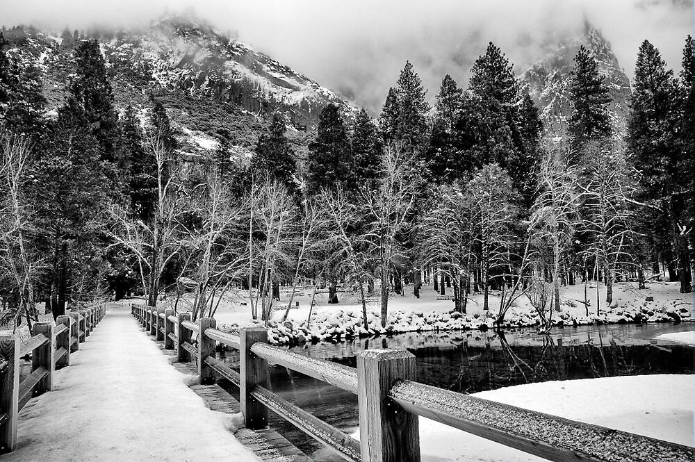 Swinging Bridge in Winter by Cat Connor
