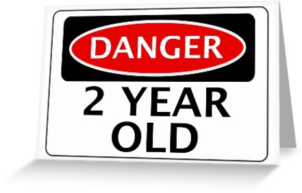 DANGER 2 YEAR OLD FAKE FUNNY BIRTHDAY SAFETY SIGN