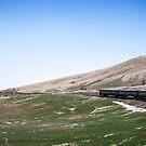 Winding through Mongolia by Ruben D. Mascaro