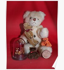 Teddies in Miniature Poster