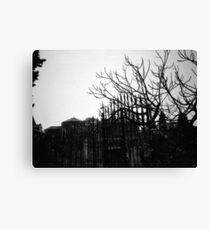 Barren - Lomo Canvas Print
