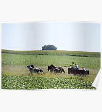 Chuckwagon Poster