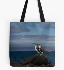 Blue Footed Boobies Tote Bag