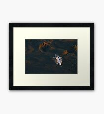 Discarded Clothing Framed Print