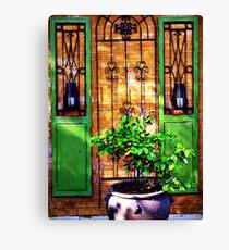 Doors & more... Canvas Print