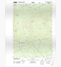 USGS TOPO Map New Hampshire NH Mount Chocorua 20120508 TM Poster