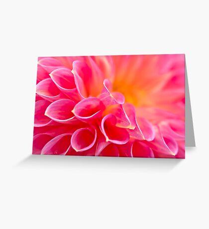 Close up of a Dahlia Greeting Card