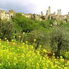 The towers of San Gimignano - Italy by Arie Koene
