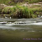 Silky Water by MattReeves