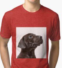 Great Dane Portrait Tri-blend T-Shirt