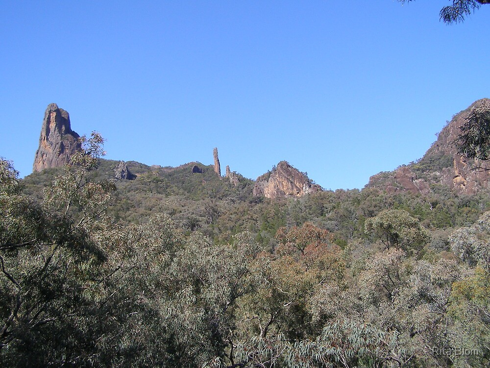 A closer look at our Goal, Warrumbungle Nat. Park. Coonabarabran. N.S.W. by Rita Blom