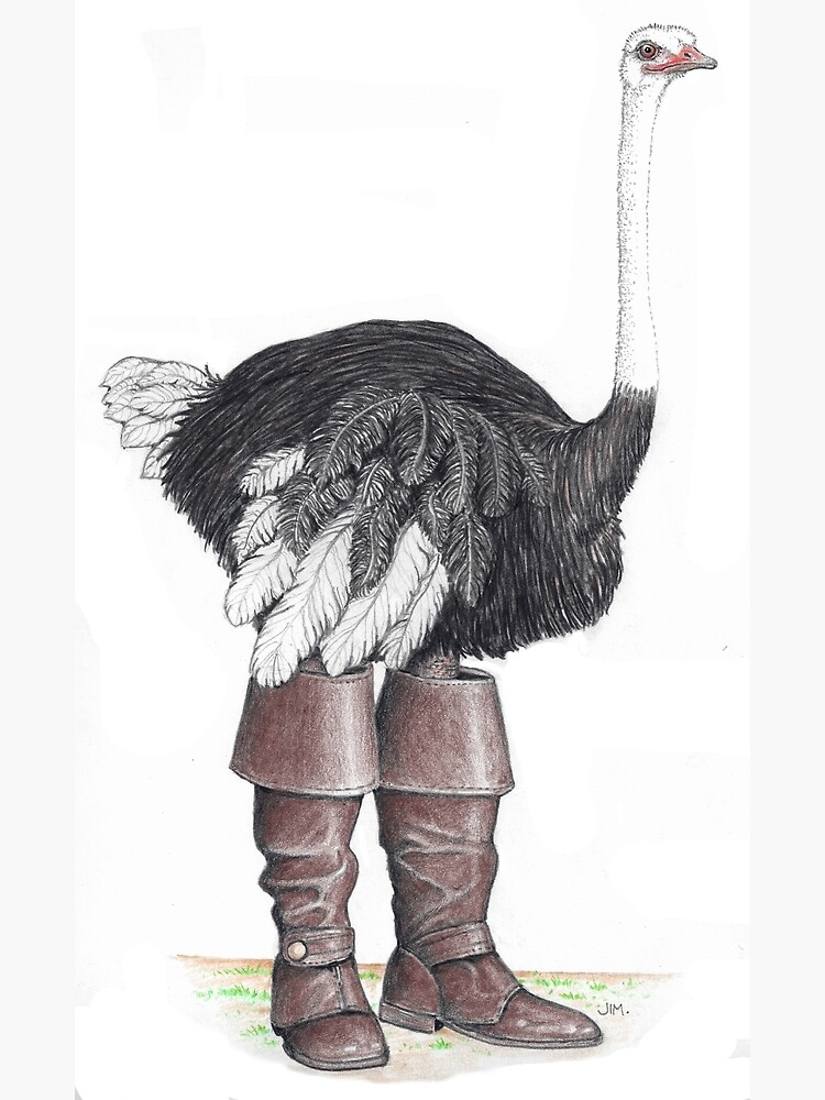Ostrich in Musketeer boots by JimsBirds