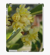 The Glorious Buds of Bay iPad Case/Skin