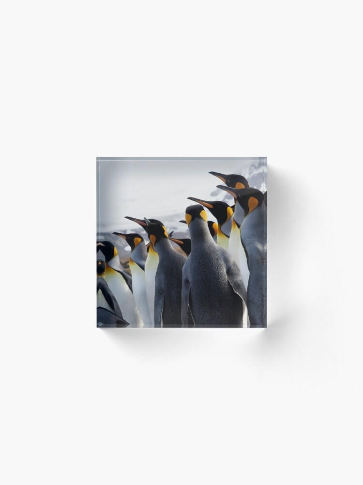 Alternate view of Pride Of Penguins Acrylic Block