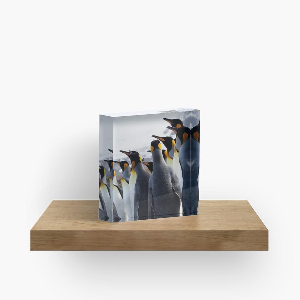 Pride Of Penguins Acrylic Block