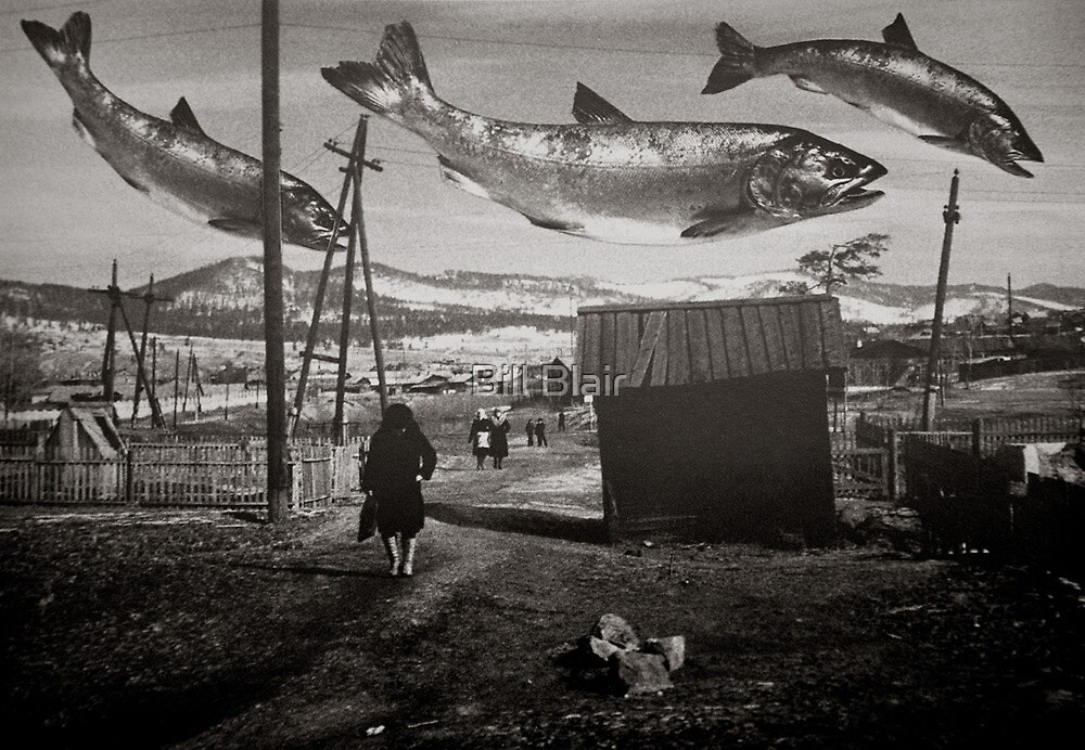 Chinook Wind by Bill Blair