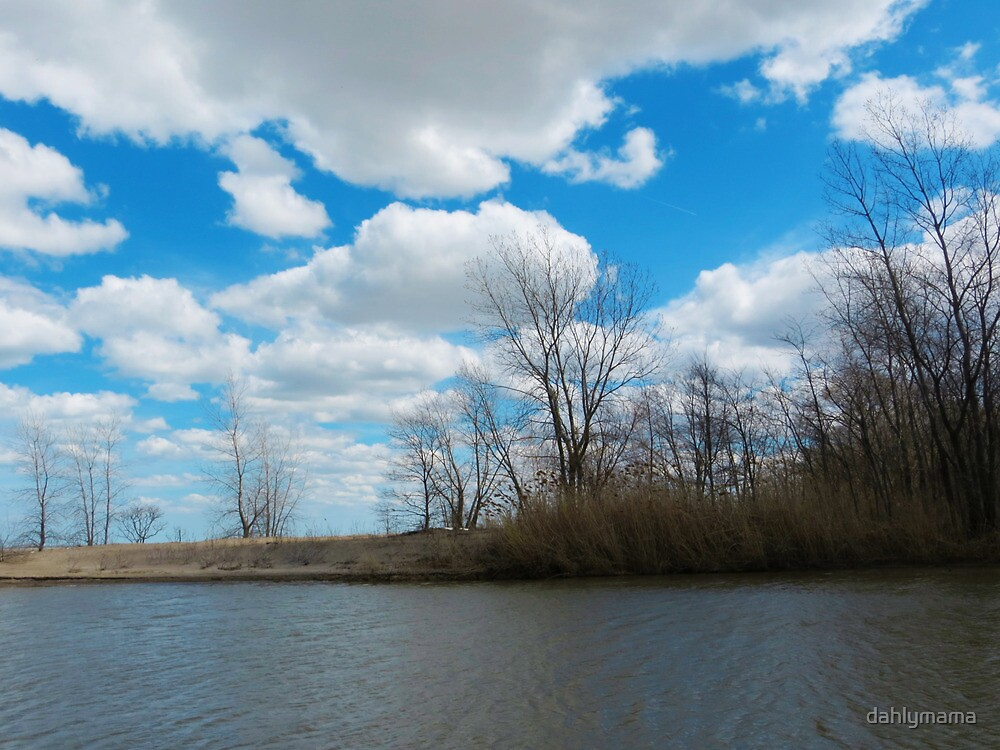 Estuary in Early Spring 3 by Shawna Rowe