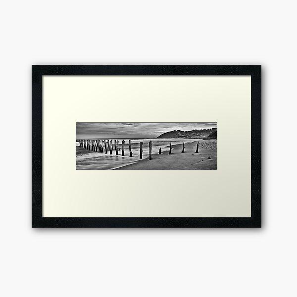 St Clair Beach, New Zealand Framed Art Print