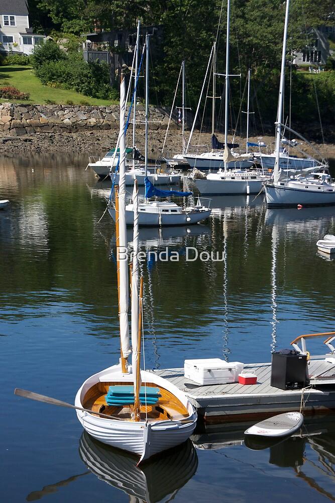Camden Harbor,  born in Maine by Brenda Dow