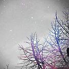 Space Raven by KisaSunrise