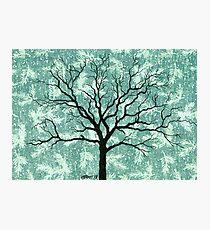 TREE ON DESIGN PAPER Photographic Print