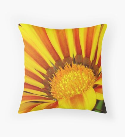 A Yellow and Maroon Striped Gazania Closeup Throw Pillow