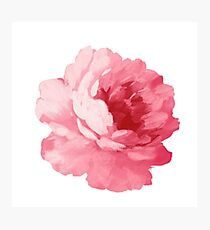 Watercolor Flower Photographic Print