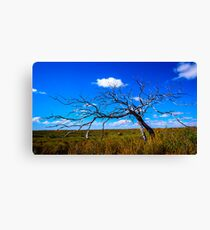 Skeleton Country Canvas Print