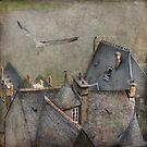 Rooftops at Mont Saint-Michel by dawne polis