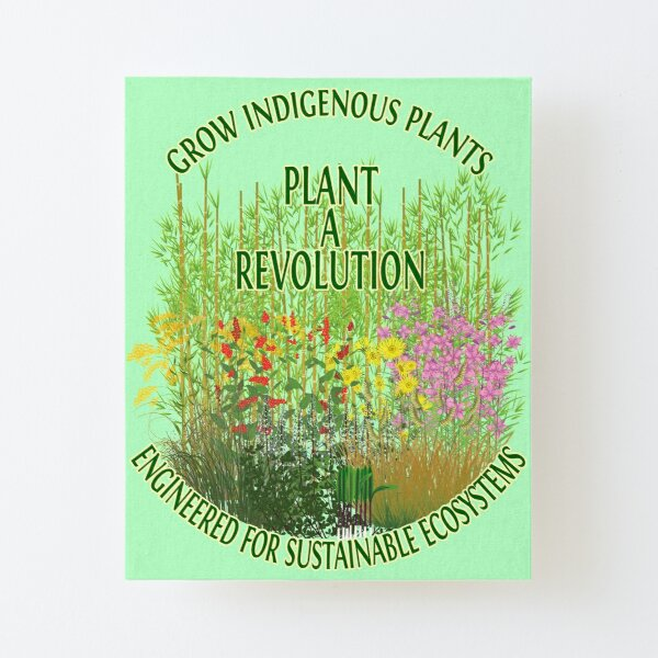 Plant A Revolution  Canvas Mounted Print