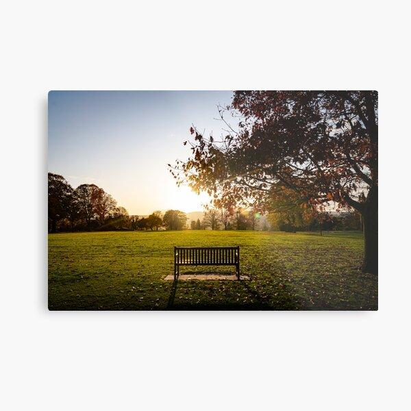 Take a seat (Crichton Gardens, Dumfries) Metal Print
