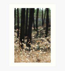 Fluffy Grass #2 Art Print