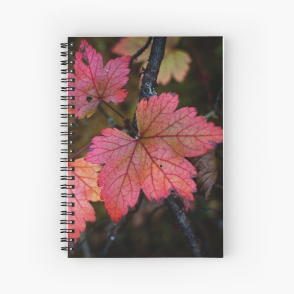 Fall colors in Québec Spiral Notebook