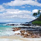 Pa'ako Beach, Makena ~Morning light by Marjorie Wallace