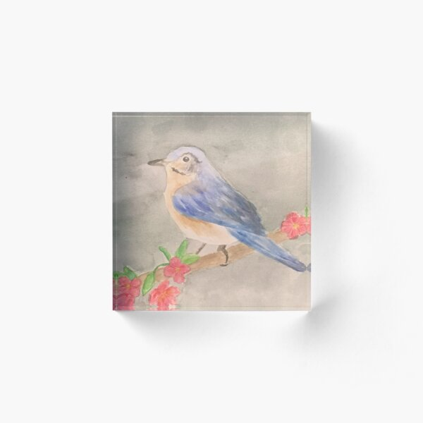Bluebird Acrylic Block