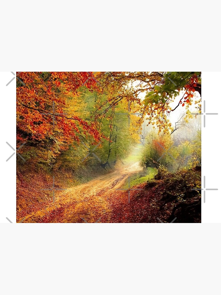 Autumn forest  Jigsaw Puzzle